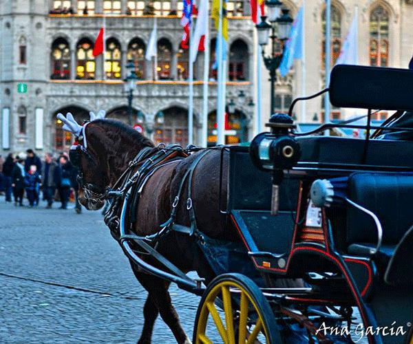 Vier oudejaar in Brugge